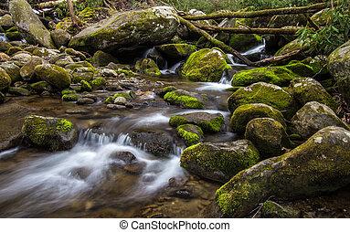 Great Smoky Mountain Stream