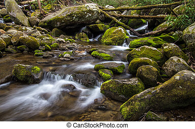 Great Smoky Mountain Stream