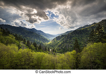 Great Smoky Mountains National Park Mortons Overlook Scenic Landscape Gatlinburg TN with spring greens and dramatic sky