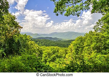 Great Smoky Mountains Overlook