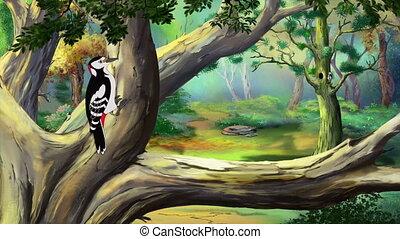 Great Spotted Woodpecker - Great Male Spotted Woodpecker...