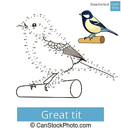 Great tit bird learn to draw vector - Great tit learn birds...