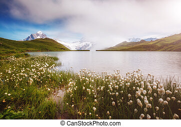 Great view of the snow rocky massif. Location place Bachalpsee in Swiss alps, Grindelwald valley.