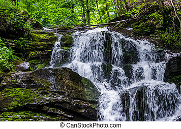 Great waterfall Shypit in Carpathian mountains. beautiful...