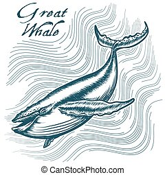 Great Whale in deep water. Engraving style. Only free font...