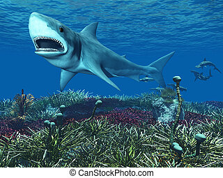 A great white shark swimming underwater with hammerhead sharks in the background.