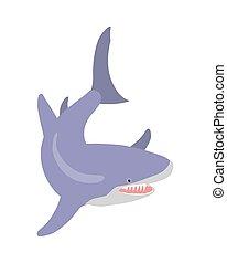 Great White Shark Cartoon Flat Vector Illustration - White...