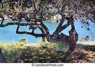 Greece, Thassos Island