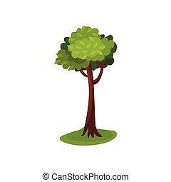 Green abstract tree vector Illustration