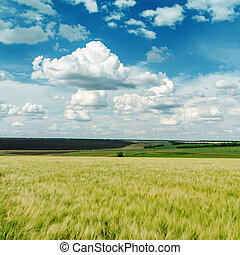 green agricultural field and clouds in blue sky