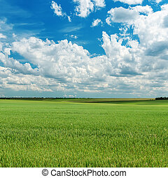green agriculture field and clouds over it