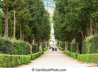 Boboli gardens - green alley in Boboli gardens at summer...