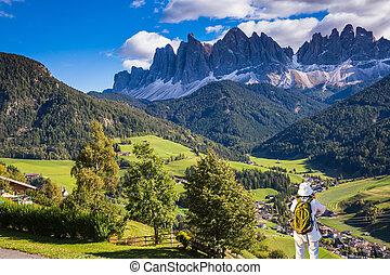 Green Alpine meadows and farm