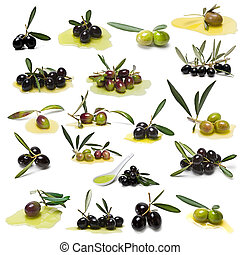 Green and black olives collection.
