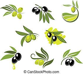 Green and black olives set