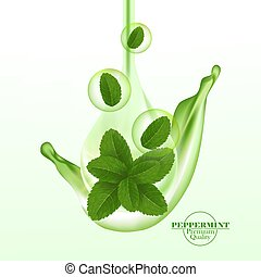 Green and fresh peppermint leaf vector illustration.