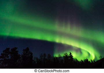 green and pink aurora borealis on a starry sky in the north...