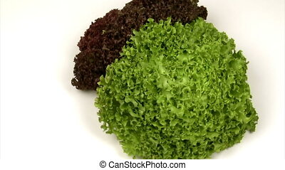 Green and red lettuce on a rotating platform