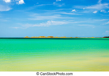 Green and Turquoise Water