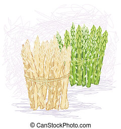green and white asparagus - closeup illustration of bunches...