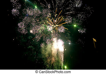 Green and white fireworks blow up illuminating night sky