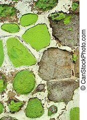 Green and white stone wall 2