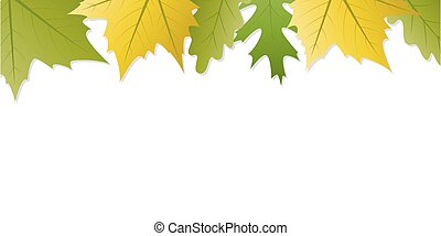 green and yellow autumn leaves white background with copy space