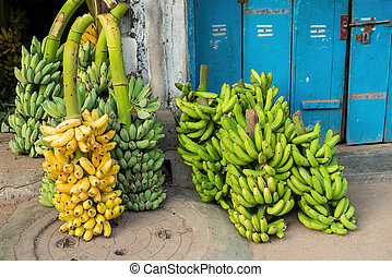 green and yellow bananas in a bunch up for sale