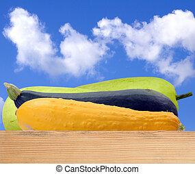 green and yellow hard squash