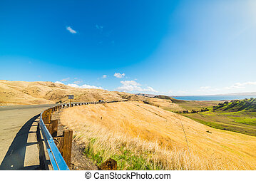 green and yellow hill in California