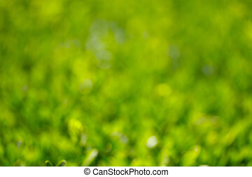 Green and yellow natual bokeh background