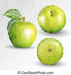 Green apple collection. Set of fruit isolated on white. Realistic vector, 3D