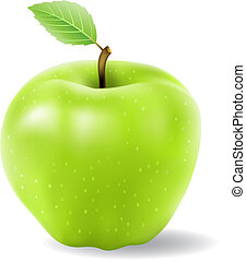 green apple isolated on a white background, vector illustration