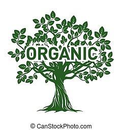 Green Apple Tree and ORGANIC. Vector Illustration.