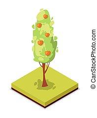 Green apple tree isometric 3D icon