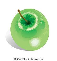 Apple (vector)