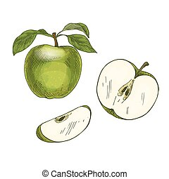 Green apple with leaf and half of fruit.