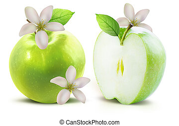 Green apples and flowers isolated with clipping path