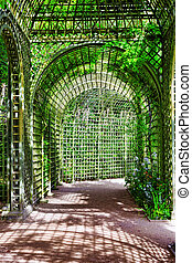 Green archway in a garden. Beautiful Versailles , France