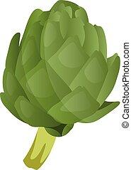 Green artichoke vector illustration of vegetables on white background.