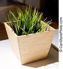 Green Artificial Grass in A Wooden Pot