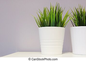 Green Artificial Plant in A Porcelain Pot