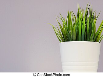 Green Artificial Plant in White Porcelain Pot