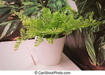 Green Artificial Plants in A Ceramic Pot
