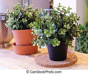 Green Artificial Plants in Ceramic Pot and Plastic Pot