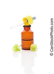 Green Asiatic Pennywort in medicine dropper. - Gotu kola...