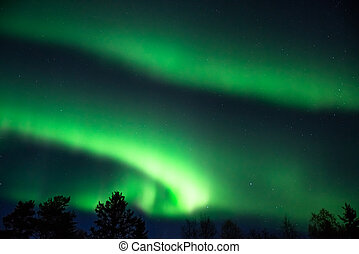 green aurora borealis on a starry sky - green aurora...