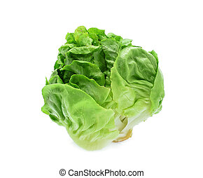 green baby cos lettuce vegetable isolated on white background