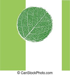 green background with circle veined