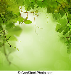 Green background with grape leaves